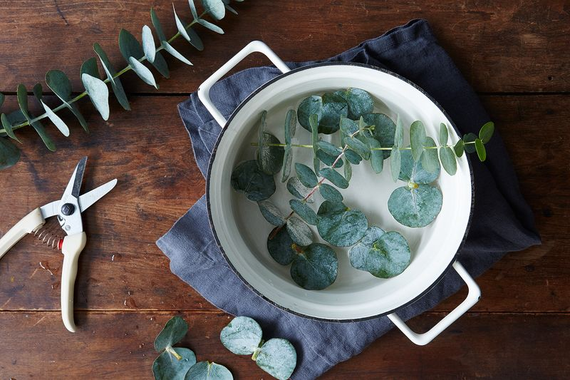 Eucalyptus is a wonderful scent for the bathroom.
