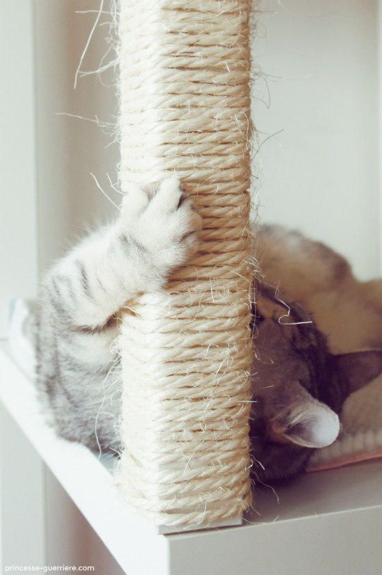 Wrap thin rope around the legs of end tables to create scratching posts to make you and your cat happy.
