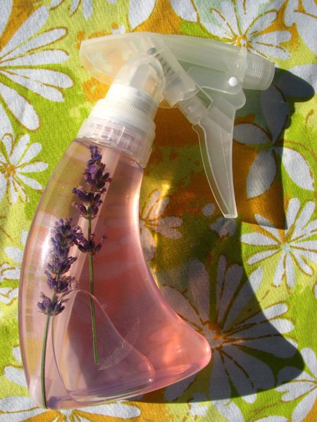 Make your own flea cat repellent so your little friend can enjoy Summer outdoors.