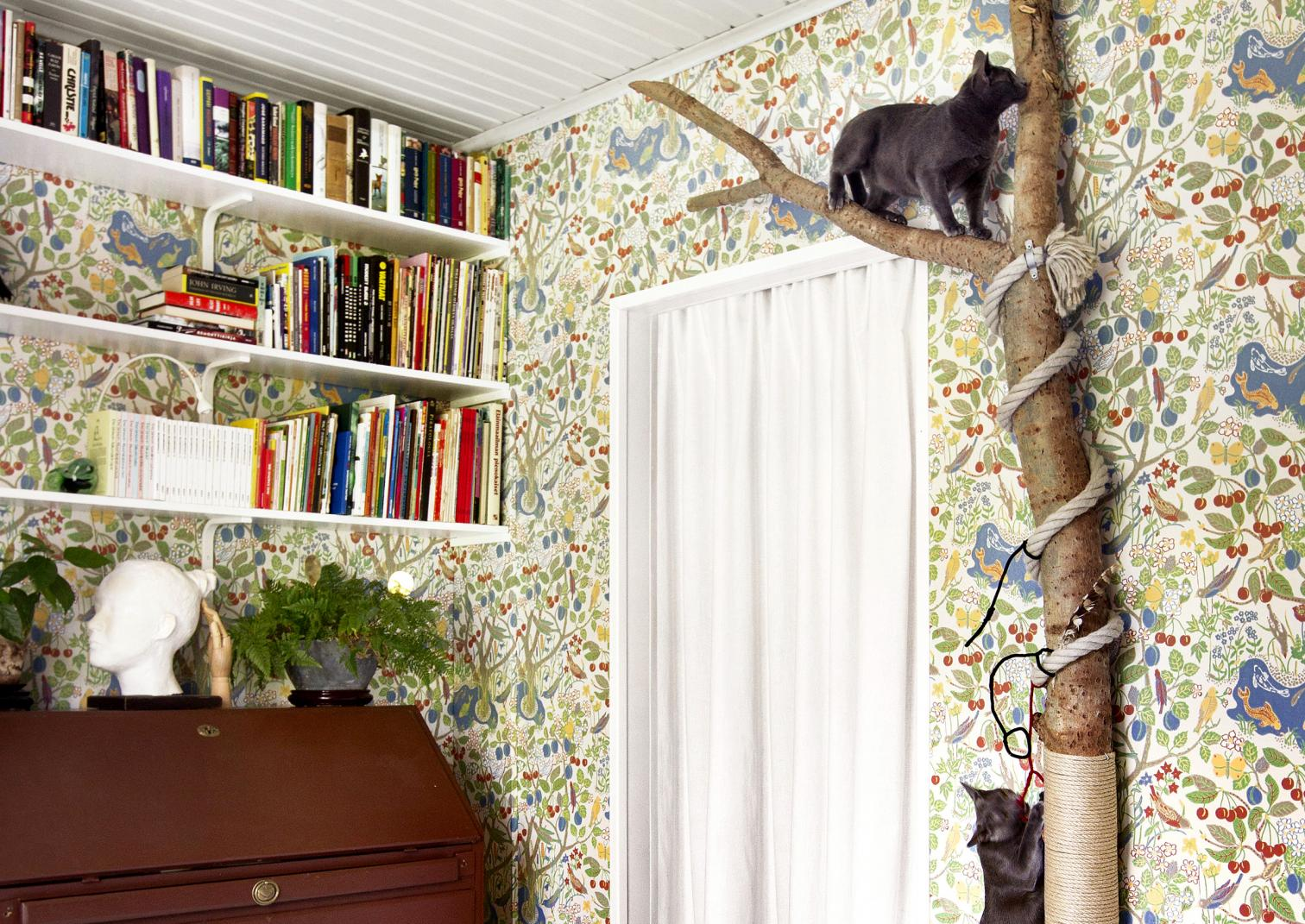 Use a real tree as stylish cat scratching and climbing post.