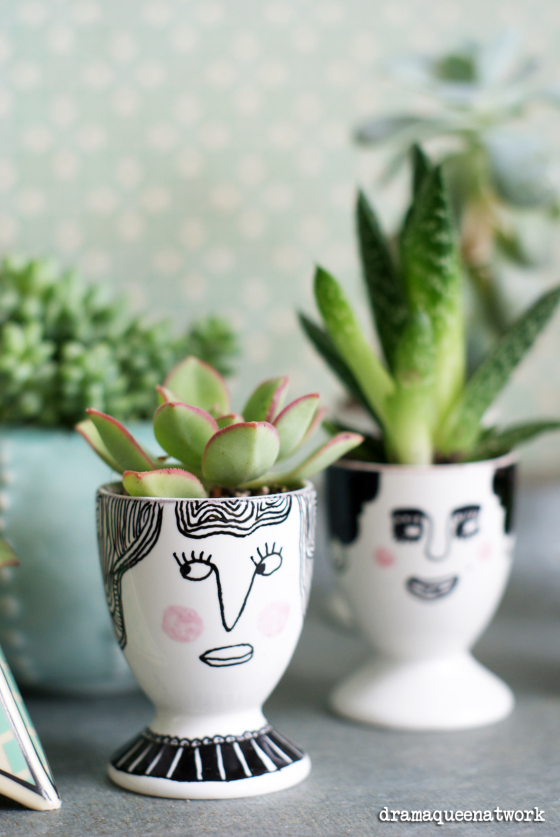 repurpose an egg holder to make cute faces for your succulents